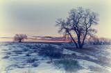 20111215-_DSC3904_HDR.jpg