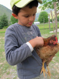 Rahil and the patient hen