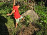 Hodag hunting
