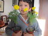 Gardener!