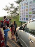 A trip to the Okhla Bird Sanctuary