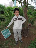 Rahil's first tree (Bombay 2012)