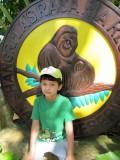 Rasa Ria orangutan sanctuary (Borneo, 2011)