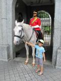 Kuala Lumpur horse