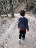 Bird watching hike in Pangot