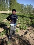 Prospecting for garden plots