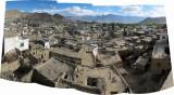 Old Leh from LAMO (3 June 2011)