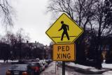 Ped Xing Northampton MA.jpg