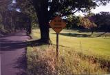 Slow Golfers Crossing