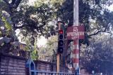 No Infiltration Left (Calcutta)