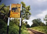 Caution -- Elephant Crossing (Rishikesh)