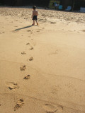 Trailing footprints