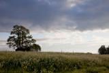 Tyresta National Park - Wilderness just 20 km from Stockholm