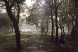 river rain.jpg