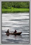 Salmon fishing. River Namsen
