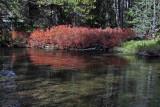 IMG_0199 Firehole River