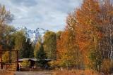IMG_0015 Elk Ranch