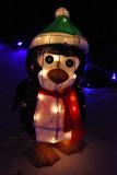 IMG_0513 Penguin.jpg