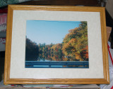 framed_pictures_for_sale
