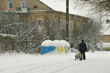 Snowfall, Rasos