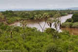 Omo River. We crossed just a little to the right of the picture.