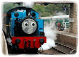 Thomas lets of Steam
