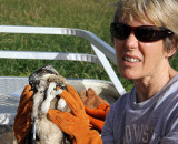 Jean holds her first osprey.