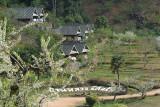 Baan Luang Resort