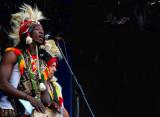 Flamboyants leurs costumes traditionnels