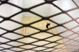 Handball_12_057.jpg