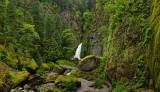 Wachella Falls Pano#1.jpg