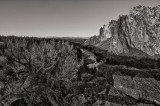 Smith Rock Morning BW Web.jpg