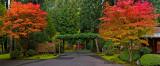 JG Arbor Panorama 1.jpg