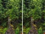 REJ_2765 Stereo VS.jpg