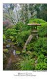 Winters Green.jpg