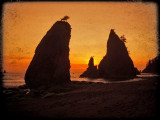 Olympic National Park - Rialto Beach