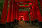 Fushimi Inari path