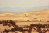 1839-1f.jpg