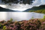 Loch Lomond  11_DSC_5330