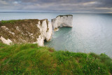 Old Harry Rocks  11_DSC_9382