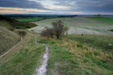 From Pewsey Down  11b_DSC_0607