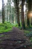 Donadea Forest Park  12_d800_0970