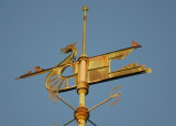 Peregrines on Viking boat upper spar: fore & aft