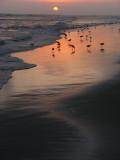sand water sky