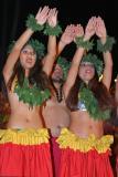 Various Polynesian dancers