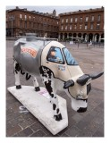 cow_in_toulouse