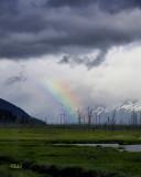 Rainbow Over Seward Hiway
