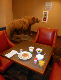Breakfast at the Hampton Inn