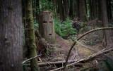 Ghosts of logging methods past