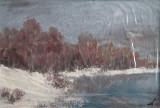 Iarna la Pustnicu(colectie autor)
